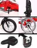 Motocicletta elettrica dell'abbonato con un nuovo disegno leggero moderno
