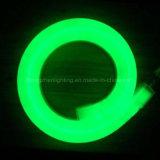 Indicatore luminoso flessibile al neon impermeabile della corda dello standard internazionale IP44 12V LED