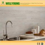 azulejo limpio fácil suave superior de la pared de 5.5m m para el sitio mojado