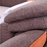 Meubles de toile Fb1150 de sofa de tissu de qualité de modèle moderne