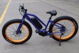 セリウムが付いている8楽しみモーター脂肪質のタイヤの電気自転車