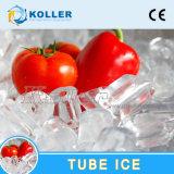 máquina del fabricante del tubo del hielo 5000kg de de alto rendimiento
