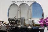 De moderne Ovale Spiegel van het Frame van het Roestvrij staal van de Decoratie van het Meubilair van de Woonkamer van de Vorm