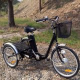250W/350W/500W 3 Wheel Classic Adult Electric Tricycle with En 15194 Certification