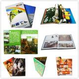 Encuadernación perfecta de alta calidad profesional de impresión de libros de tapa dura