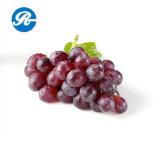 Выдержка семени виноградины внимательности кожи