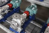 Hochtemperaturzirkulations-Heißöl-Pumpe