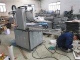 Preiswerter Roboter-Arm-vertikale Bildschirm-Drucken-Maschine (TM-3045Z)