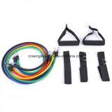 La resistenza di gomma di forma fisica lega la corda elastica 11PCS/Set di addestramento