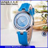 ODM 공장 우연한 석영 숙녀 손목 시계 (Wy-067C)