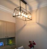 손에 의하여 불어지는 유리제 펀던트 램프 미국식 가정 램프