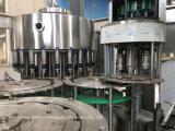 2000-48000manantial de agua de la HBP Lavado Máquina Tapadora de llenado