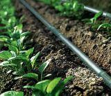 HDPE van 25mm de Pijp van het Polyethyleen van de Pijp van de Irrigatie van de Slang van de Druppel voor het Systeem van de Irrigatie Frip