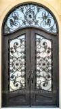 Fabricante China precio directo de hierro forjado Puerta de entrada de Exterior Puertas de metal (EI-025)