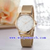 De Horloges van het Roestvrij staal van het Embleem van de douane (wy-027A)