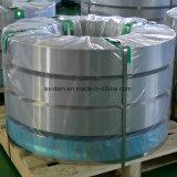 Das populärste Beste, das warm gewalzte Edelstahl-Streifen /Cold-AISI304 mit großem verkauft, imprägniern