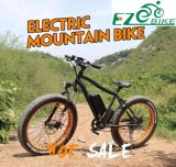 Fat Electric Bike Kit 750W, Bicicleta eléctrica barata para la venta