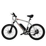 Fantasバイク都市Hunter005電気バイク
