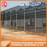 Casa verde de vidro Tempered da extensão da agricultura multi