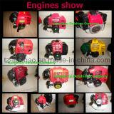 CE/SGS Motorserie