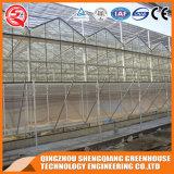 Landwirtschafts-multi Überspannungs-ausgeglichenes Glas-grünes Haus