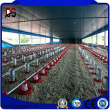 Bâtiments en métal Structure en acier Hangar agricole pour la vente de poulet