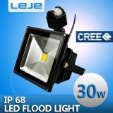 Светодиодные прожекторы индукции 30W (LEJE-TG302)