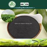 Ricchi microbici dell'agente del carbone di legna di bambù di Kingeta in efficace fertilizzante del carbonio