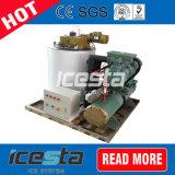 2 tonnes/jour Flake Machine à glaçons avec de la glace la trémie de stockage