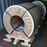 高品質のステンレス鋼のコイルAISI317の等級