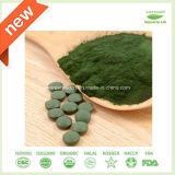 Heißer Verkaufs-hochwertige Chlorella-Tabletten in der Masse