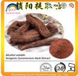 Polvere dell'erba P.E. di Songaria Cynomorium per la sanità maschio