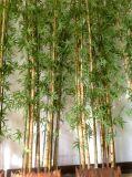 Искусственние Bamboo заводы с баком