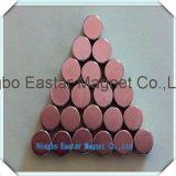 Permanente Magneet van uitstekende kwaliteit 007 van de Schijf van het Neodymium