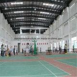Edificio de interior barato de la corte de la cesta de las estructuras de acero con el espacio grande