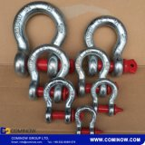 Geschmiedete Stahlanker-Bogen-Fessel schraubepin-G209 galvanisiert