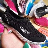 شبكة علبيّة [كسول شو] مخزون أحذية