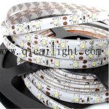 Tiras flexibles de la fábrica 24V IP67 SMD 3528 LED de China Shenzhen
