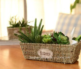 (BC-SF1007) Eco-Friendly Handmade 자연적인 밀짚 꽃 바구니