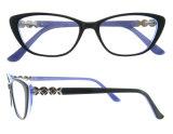 유리 형식 Eyewear 광학 프레임 안경알 프레임을%s 셀루로스 아세테이트