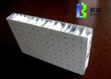 Le poids léger en aluminium Piercing de sandwich à nid d'abeilles lambrisse des panneaux d'acier de Heteromorphism