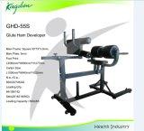 適性装置GHDのベンチかローマの椅子またはGluteのハムの開発者