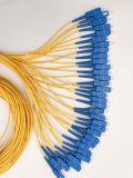 Cuerda de corrección de la fibra de Opticial del divisor del PLC del rectángulo plástico de la telecomunicación 1X32 de Gpon