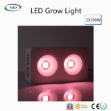 Energy-Saving 2 * 200W LED Grow Light com design patenteado COB + Reflector