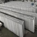 Pietra da costruzione della lastra del granito di vendita diretta della fabbrica della Cina