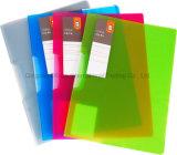 Arquivo de relatório colorido desobstruído do fechamento do balanço