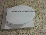 Elongated место туалета Ts-1002, неэлектронная крышка места Bidet для американского туалета ви-образност