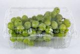 ペット使い捨て可能な緑のフルーツのまめボックス