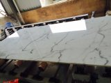 Lajes de mármore brancas Polished de Bianco Calacatta