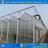 野菜栽培の温室